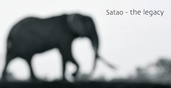 Satao - plain legacy